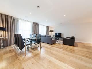 Prime Location Parkside Apartment (19) - Cambridge vacation rentals
