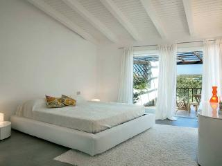 Luxury Apartment sea view with swimmingpool - Porto Cervo vacation rentals