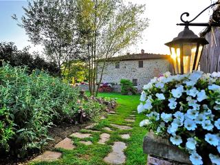 Beautiful Villa sleeps 10 in the Chianti area - Castelnuovo Berardenga vacation rentals