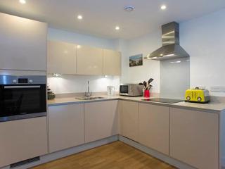 2 bed modern City apartment, Mildmay Ave, Islington - London vacation rentals