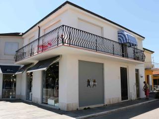La casa di Nonna Fortunata - Viareggio vacation rentals