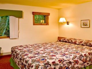 Christmas Week Rental In Pocono, PA - East Stroudsburg vacation rentals