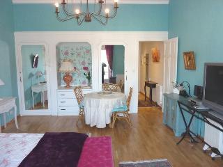 location  meuble de tourisme classe 4e - Chatelguyon vacation rentals