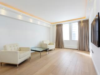 1 bed flat on Harley Street, Marylebone - London vacation rentals