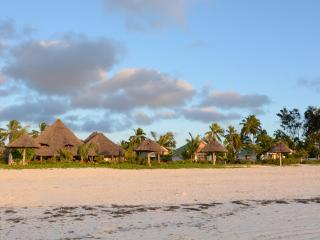 Unforgattable Zanzibar Retreat - Paje vacation rentals