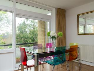 Nice 3 bedroom Condo in London - London vacation rentals