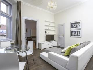 Charming Old Town Center apartment - Prague vacation rentals