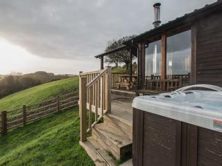 Pengelli Farm Lodge - Llandeilo vacation rentals