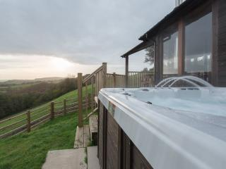 Beautiful 2 bedroom Llandeilo Lodge with Deck - Llandeilo vacation rentals