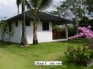 Cottage C, El Torcido Studio Accommodation - Las Terrenas vacation rentals