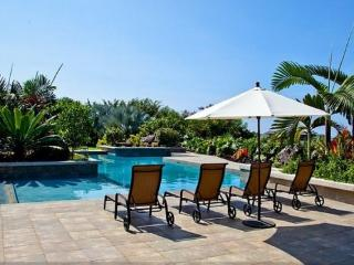 Ahinahina Hale- Minutes to the Beach! Amazing View - Kailua-Kona vacation rentals