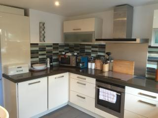 Rugby Lodge - Dublin vacation rentals