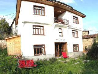 Bright 4 bedroom Iznik Villa with Satellite Or Cable TV - Iznik vacation rentals