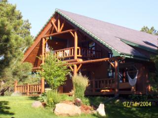 Lodge Style Home in the Blackhills of South Dakota - Rapid City vacation rentals
