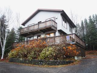 L'Autrichien magnifique chalet avec spa - Petite-Riviere-Saint-Francois vacation rentals