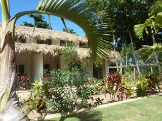 Comfortable House with Television and Microwave - Las Terrenas vacation rentals