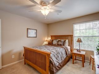 Charming Condo with Television and DVD Player - Chandler vacation rentals