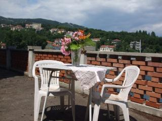 1 bedroom Apartment with Balcony in Ika - Ika vacation rentals