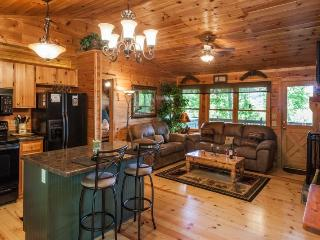 Little Bear Paw-Cozy tree top cabin - United States vacation rentals