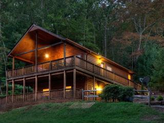 Appalachian Escape-10 Minutes from Downtown Blue Ridge! - United States vacation rentals