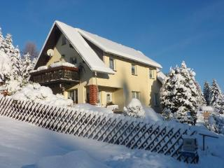Vacation Apartment in Bad Elster - 377 sqft, quiet, clean, relaxing (# 1274) - Bad Elster vacation rentals