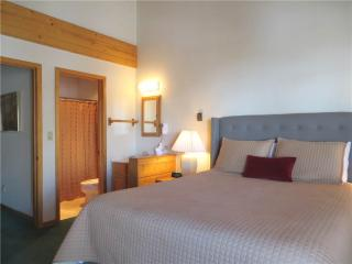 Eagle's Nest #24-1 - Crested Butte vacation rentals