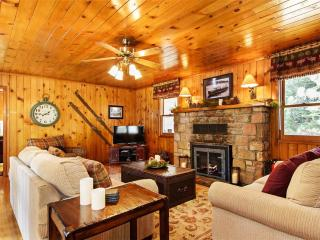 Cozy 2 bedroom Tahoe City House with Internet Access - Tahoe City vacation rentals