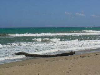 Nice Condo with Long Term Rentals Allowed (over 1 Month) and Stove - Cabarete vacation rentals