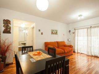 Palermo, Bright & Charming flat - Full equipped - Buenos Aires vacation rentals