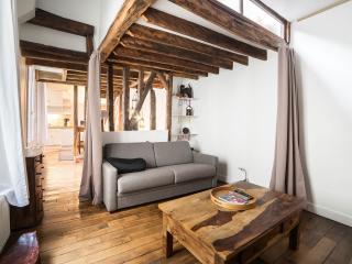 The Triplex of Montmartre - Paris vacation rentals