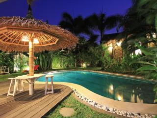 "Luxury ""Villa Suka"" in center Seminyak - Seminyak vacation rentals"