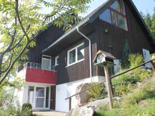 Fewo Titiseeblick, Hochschwarzwald-Card-gratis Ski - Feldberg vacation rentals
