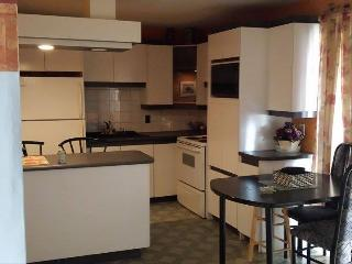 Very large 1 bedroom appartment - Shawinigan vacation rentals
