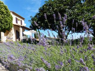 L'Oustaou de Fanny et Marius (Camargue) - Comps vacation rentals