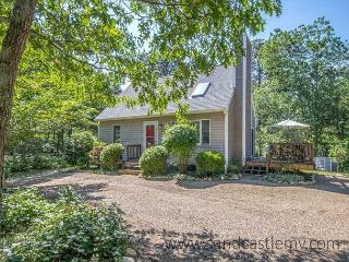 Beautiful Cape with Air Conditioning Close to Town and Morning Glory Farm - Edgartown vacation rentals