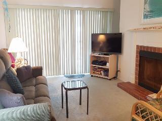 Beach Cottage Condominium 2403 - Indian Shores vacation rentals
