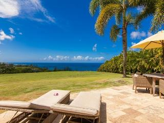 Luxury Oceanfront Cottage - Spa\Jacuzzi - Kilauea vacation rentals