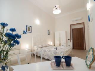 ampia, pulita, centrale - Naples vacation rentals