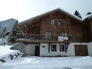 La tete de l'éléphant - Haute-Savoie vacation rentals