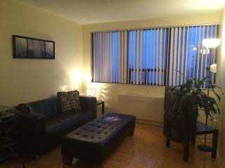 Yonge & Bloor Studio Skyline - Toronto vacation rentals