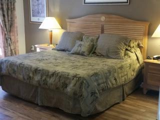 Orlando/Kissimmee Lake Berkley 5 bed luxury villa. - Kissimmee vacation rentals