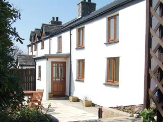 Lovely 3 bedroom Capel Bangor Cottage with Internet Access - Capel Bangor vacation rentals