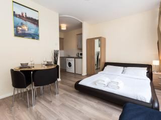 ★CENTRAL LONDON AMAZING APARTMENT - WOW★ - London vacation rentals