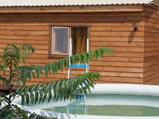 Nice Guest house with Internet Access and Shared Outdoor Pool - Blagoveshchenskaya vacation rentals