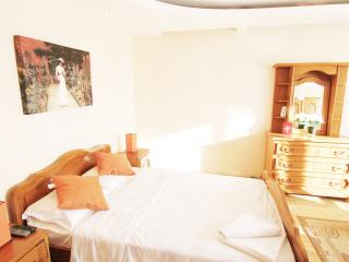 CERT ACCOMMODATION - STUDIO CHATEAU - Bucharest vacation rentals