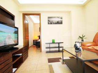 CERT ACCOMMODATION - DOUBLE STUDIO OLD TOWN - Bucharest vacation rentals
