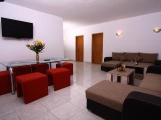 Bucharest VIP Villa - Bucharest vacation rentals