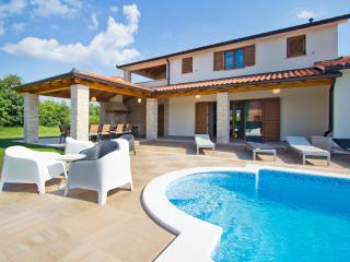 4 bedroom Villa with Television in Nedescina - Nedescina vacation rentals