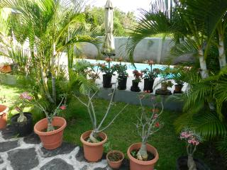 Grand Gaube Villa - Private Swimming Pool (Slp 10) - Grand Gaube vacation rentals
