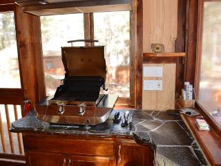 3 bedroom House with Internet Access in City of Big Bear Lake - City of Big Bear Lake vacation rentals